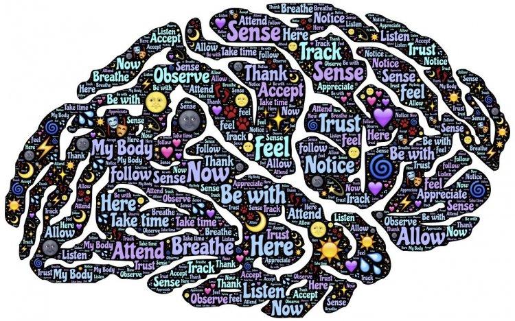 Beyin Sağlığını Korumak İçin Neler Yapmalıyız? Sağlıklı Beyin İçin 11 Öneri