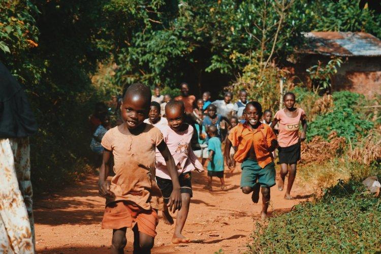 Fildişi Sahili'nde Ebola Vakası: 25 Yıl Sonra İlk Kez Görüldü!