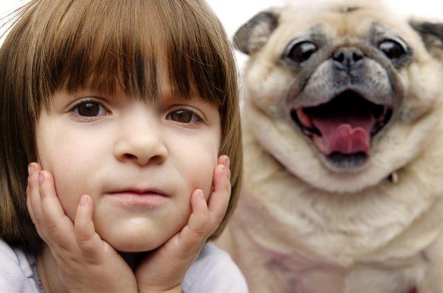 Evdeki Kedi Köpek  Bebeğe Zarar Verir Mi?