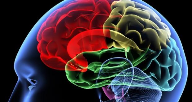 Beynin Üç Boyutlu Görüntülemesi: Beyin Perfüzyon SPECT