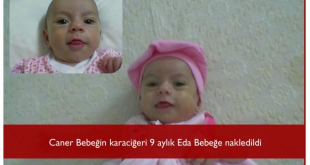 Caner Bebek, Eda Bebeğe Can Verdi